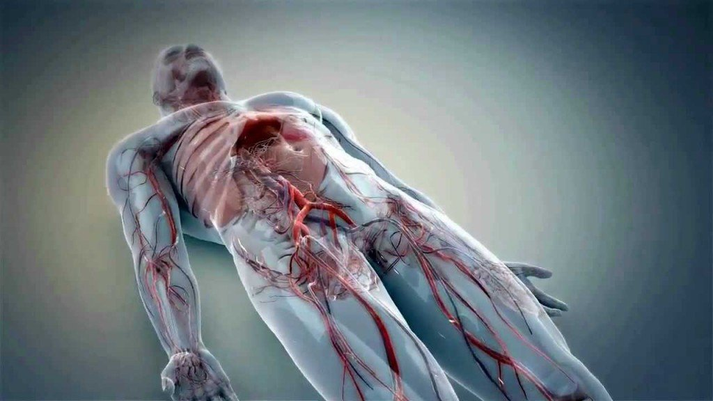 How the healthcare industry benefits from 3D medical animation